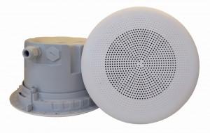 DNH įmontuojamas garsiakalbis BPF-660, 8 omų - Garsiau.lt
