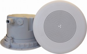 DNH įmontuojamas garsiakalbis BPF-860, 8 omų - Garsiau.lt
