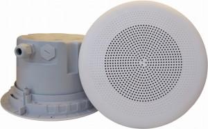 DNH įmontuojamas garsiakalbis BPF-860 T, 70/100 voltų - Garsiau.lt